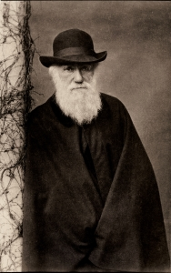 Darwin's dark vision of man.