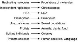 Evolutionary transitions