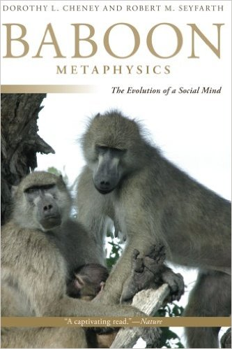 Fascinating book on baboon intelligence