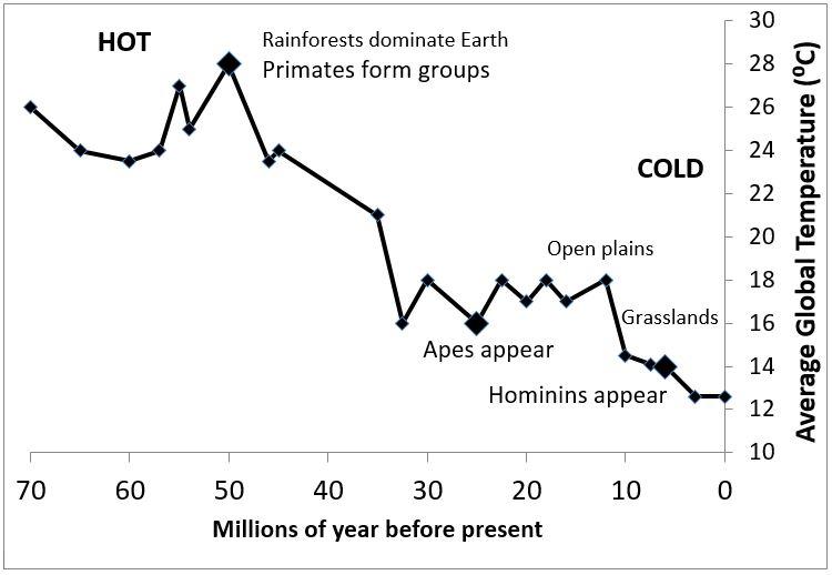 Temperature vs Human Evolution