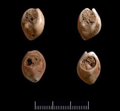 100,000 yr old pierced shells
