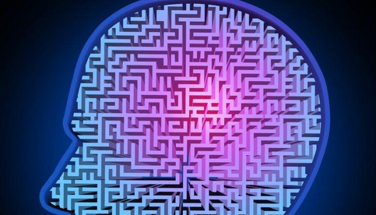 Mental Illness Not Genetic