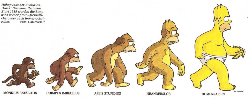 Homer Evolution