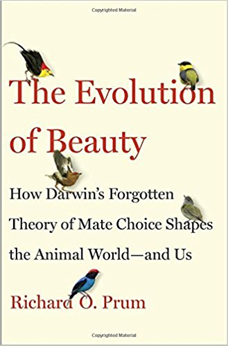 Vanity and Human EvolutionThe Evolution of Beauty