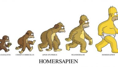Evolution of Homer